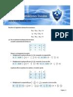 Ejercicios Resueltos Sistemas de Ecuaciones Lineales