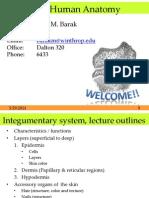 L03 Integumentary System