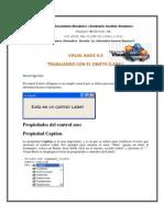 Practica 1 LABEL Visual Basic