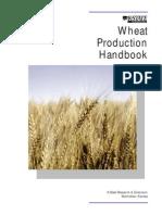Wheat (Good One)