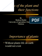 plant parts