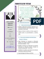 Curriculum Vitae Proyecto2014
