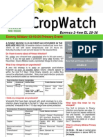 Adelaide Hills Crop Watch Downy Event