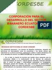 Presentación Principal Cordesbe