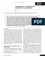 The Influenza Virus Nucleoprotein a Multifunctional RNA-binding Protein Pivotal to Virus Replication