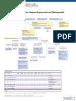Algoritme Hepatitis B