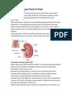 Proses Penyaringan Darah Di Ginjal