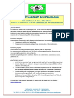 Datos  FAE-2013-pres book-v3