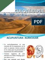 Auriculopuntura II