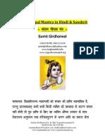 Santaan Gopal Mantra Vidhi in Hindi and Sanskrit PDF