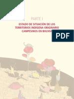Informe 2010 - Parte i Estado de Situacion de Los Tioc 1