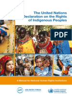 The United Nations Declaration on the Rights of Indigenous Peoples
