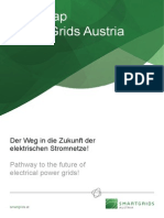 2010 Roadmap Smart Grids Austria