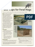 Box Traps for Feral Hogs