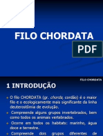 01 FILO CHORDATA Urochoradata e Cephalochordata