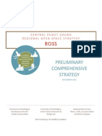 ROSS Preliminary Comprehensive Strategy