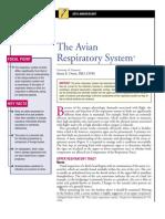 AVIAN Respiratory System