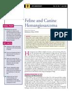 C+F-Feline and Canine Hemangiosarcoma