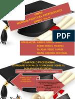 21_06_2014 Practicas Profesionales Final