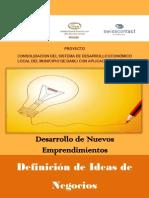 Guia de Elaboracion de Ideas de Negocios