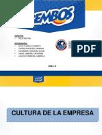casobembosfinal-131202183410-phpapp01