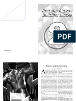 Protein Muscle Building Blocks