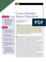 CANINE-Idıopathic erosive polyarthritis