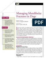 CANINE-MAnaging Mandibular Fractures in Dogs