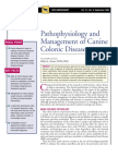 CANINE-Pathophysiology and Management of Canine Colonic Diseases