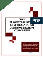 Guide de Comptabilisation Et de Présentation Des Immobilisations Corporelles