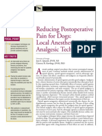 CANINE-Reducing Postoperative Pain for Dogs-Local Anesthetic and Analgecis Techniques