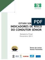 Indicadores de Risco Condutor Senior