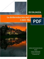 Deforestación Del Mato Grosso