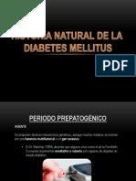 historianaturaldeladiabetes-121116015315-phpapp02