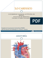 Ciclocardiaco Villedajuarez 100831170520 Phpapp01