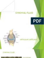 Synovial Fluid