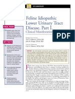 FELINE-Feline Idıopathic Lower Urinary Tract Disease.Part I.