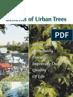 Benefits of Urban Trees