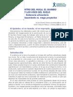 Duarte-Murillo-EL CENTRO DEL HUILA EL QUIMBO Y LOS USOS DEL SUELO Soberania Alimentaria y Desplazamiento vs Mega Proyectos