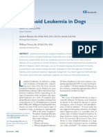 Lymphoid Leukemia in Dogs