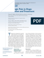 Oncologic Pain in Dogs