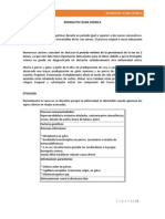 BRONQUITIS FELINA CRÓNICA.docx