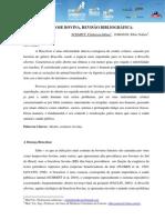 Brucelose Bovina, Revisão Bibliográfica
