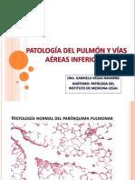Clase.patología Pulmonar 2014.II