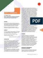 Revision bibliografica.pdf