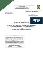 Raportul Procedurii - Gavojdia - Executie 313