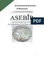 Criteris ASEBIR-Blastos