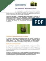 MATERIAL SEMANA 3.pdf