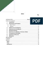 Teoria  del PLAN DE INVESTIGACION año 2013.docx