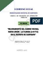 PLAN_10332_PERFIL DE PROYECTO DE INVERSIÓN PUBLICA_2010.pdf